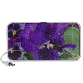 Purple Pansies Laptop Speaker