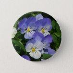 Purple Pansies Pinback Button