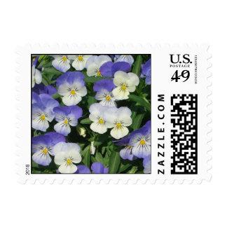 Purple Pansies Stamp