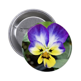 Purple Pansy 2 Inch Round Button