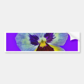 Purple Pansy Amethyst Colored Gifts  by Sharles Bumper Sticker