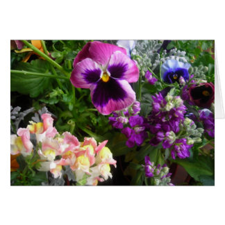 Purple pansy and friends card