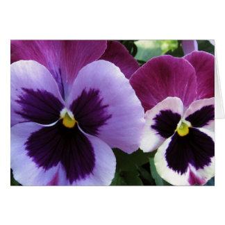 Purple Pansy Buddies Greeting Cards