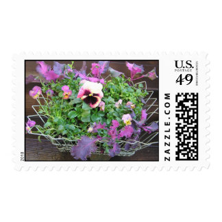 purple pansy edibles stamp