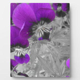 Purple Pansy Effect Plaque