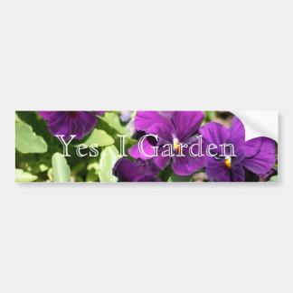 Purple Pansy I Garden Bumper Sticker