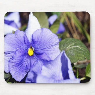 Purple Pansy Mouse Pad