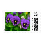 Purple Pansy Triplets Postage