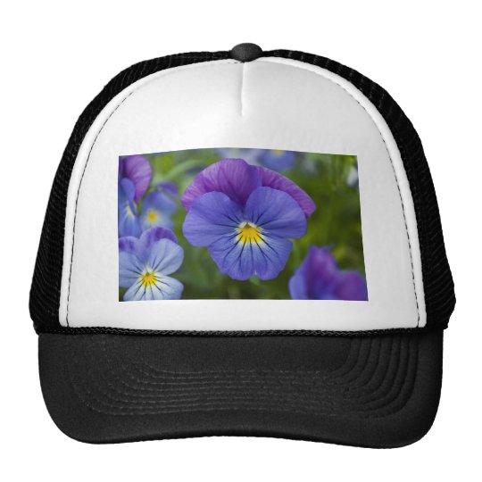 Purple Pansy Trucker Hat