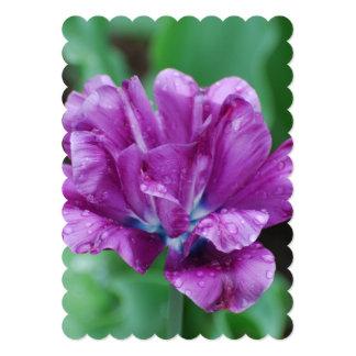 "Purple Parrot Tulip 5"" X 7"" Invitation Card"