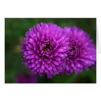 Purple passion card