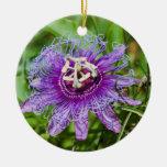 purple passion flower christmas tree ornament