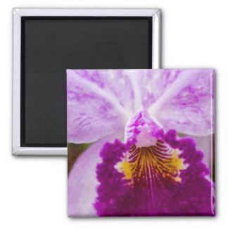Purple Passion Orchid Magnet