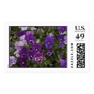 purple passion pansy stamp