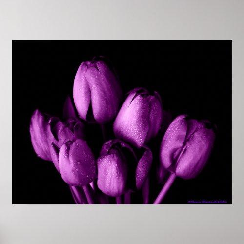 Purple Passion Poster print