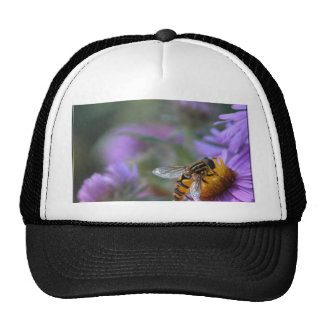 Purple Passion Trucker Hat