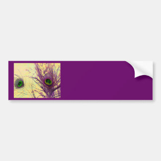 Purple Peacock Feather Bumper Stickers