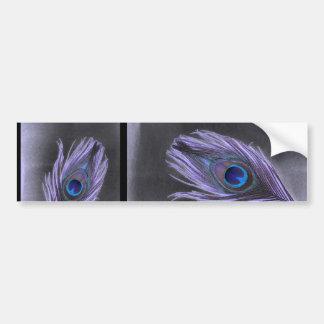 Purple Peacock Feather on Black Bumper Sticker