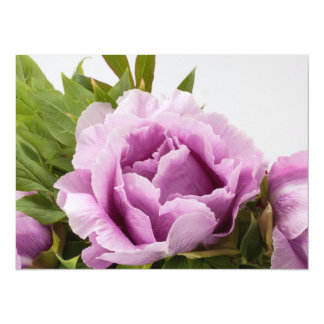 Purple Peonies Bouquet Card