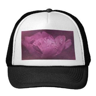 purple peony photographed by Tutti Trucker Hat