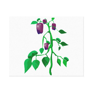 Purple peppers on green plant graphic canvas print