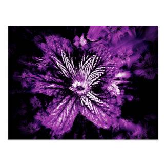 Purple Petal Hellos Postcard