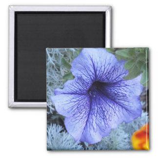 Purple Petunia 2 Inch Square Magnet