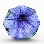 Purple Petunia Acrylic Award