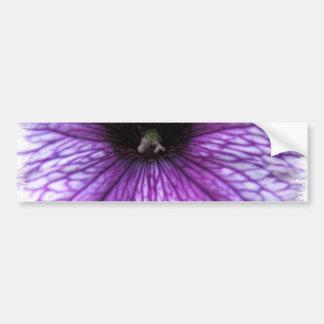 Purple Petunia Bumper Sticker
