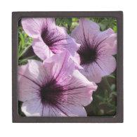 Purple Petunia Premium Gift Boxes