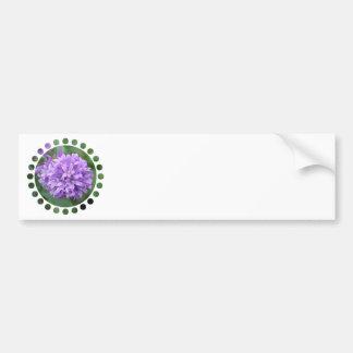 Purple Phlox Bumper Sticker