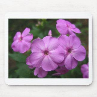 Purple Phlox Flowers Mousepad