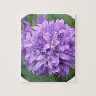 Purple Phlox Puzzle