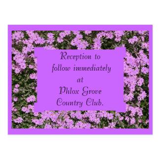 Purple Phlox Wedding Reception Card Postcard