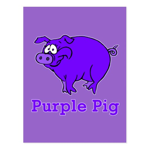 Purple Pig on Apparel, Mugs, Baby Shirts Postcards