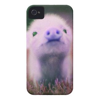 Purple Pigsy iPhone 4 Case-Mate Case