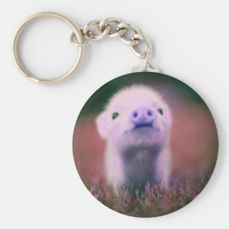 Purple Pigsy Keychain