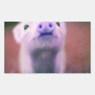Purple Pigsy Rectangular Sticker