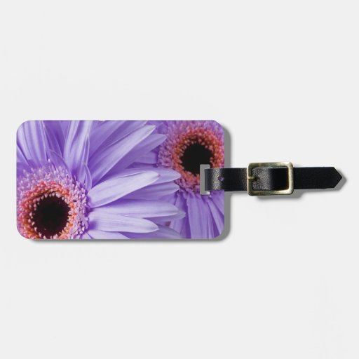 Purple Pink Daisy Customized Daisies Template Tag For Luggage