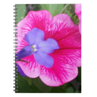 Purple & Pink Notebook (80 Pages B&W)