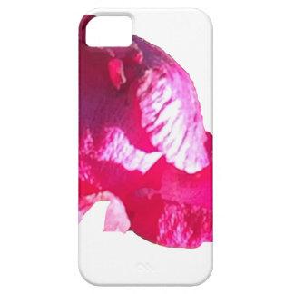 Purple Pink Rose Bud Flowers iPhone SE/5/5s Case