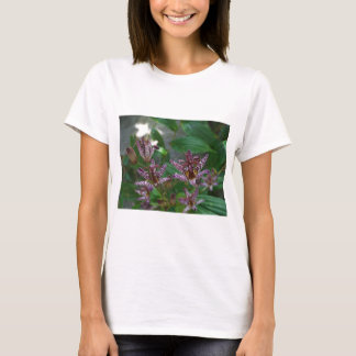 Purple pink white striped orchid like flower lilly T-Shirt