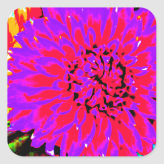 purple, pinks, orange dahlia in mason jars square sticker