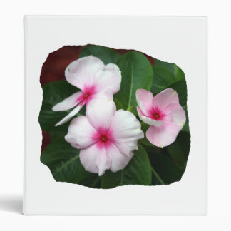 Purple Pinwheel Flowers Photograph 3 Ring Binder