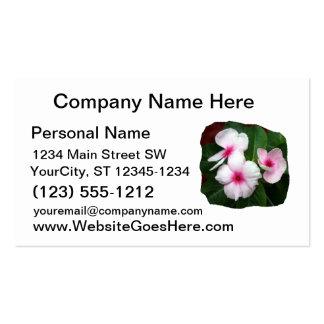 Purple Pinwheel Flowers Photograph Business Cards