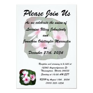 Purple Pinwheel Flowers Photograph Card