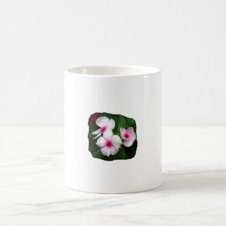 Purple Pinwheel Flowers Photograph Classic White Coffee Mug