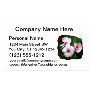 Purple Pinwheel Flowers Photograph Double-Sided Standard Business Cards (Pack Of 100)