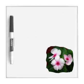 Purple Pinwheel Flowers Photograph Dry Erase Boards