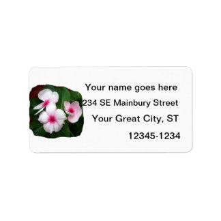 Purple Pinwheel Flowers Photograph Label
